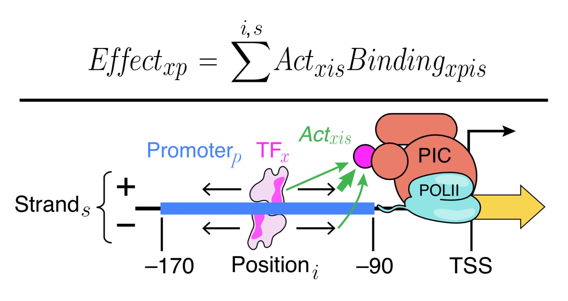 Positional models